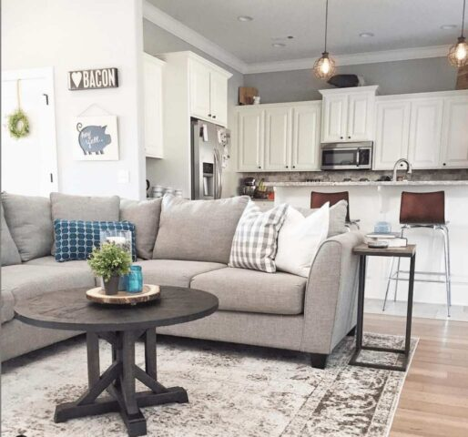 Grey Fusion Furniture sectional couch